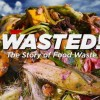 Wasted the Story of Food Waste poster