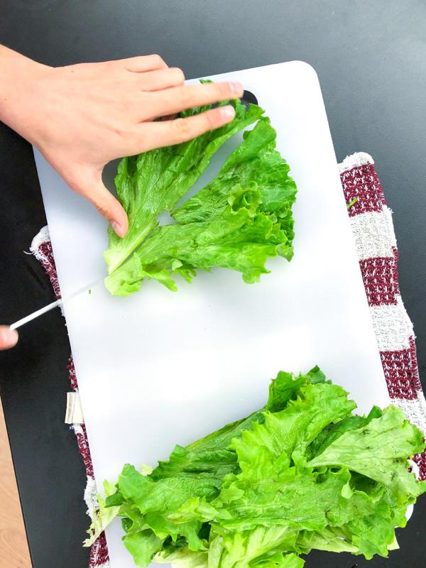 Kids chopping lettuce for Rainbow Rice Paper Rolls from Vegetarian Vietnam on eatlivetravelwrite.com