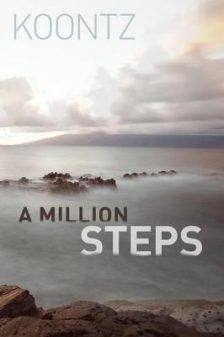 A Million Steps cover on eatlivetravelwrite.com