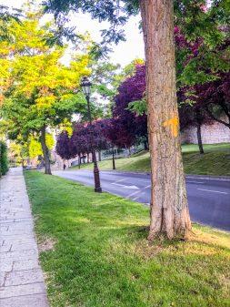 Leaving Burgos Walking from Burgos to Hornillos del Camino with camino Travel Center on eatlivetravelwrite.com