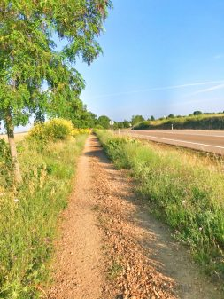 Empty roads walking from Sahagun to El Burgo Ranero on the Camino de Santiago on eatlivetravelwrite.com