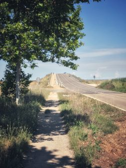 Hill in sight walking from El Burgo Ranero to Mansilla de las Mulas with Camino Travel Center on eatlivetravelwrite.com