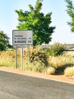 Over halfway from Burgos walking from Calzadilla de la Cueza to Sahagun on eatlivetravelwrite.com