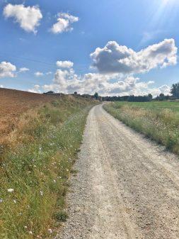 Empty Camino walking from Calzadilla de la Cueza to Sahagun eatlivetravelwrite.com