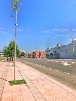 Big boulevard in Leon walking the Camino de Santiago Mansilla de las Mulas to Leonon eatlivetravelwrite.com