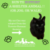 Support Humane Society at Scotia Toronto Waterfront Marathon on eatlivetravelwrite.com
