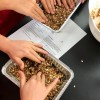 Kids pressing Rachael Ray no bake granola bars into pans on eatlivetravelwrite.com
