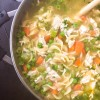 20 minute Chicken Noodle Soup from Oven to Table Cookbook on eatlietravelwrite.com