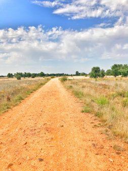 Long stretches of empty road walking the Camino de Santiago: Léon to Villavante with Camino Travel Center on eatlivetravelwrite.com