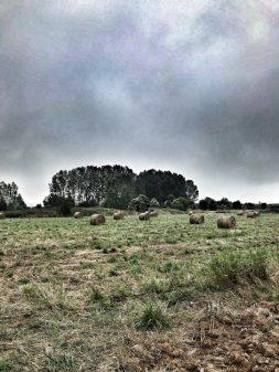 Ominous skies walking the Camino de Santiago: Ponferrada to Villafranca del Bierzo with Camino Travel Center on eatlivetravelwrite.com
