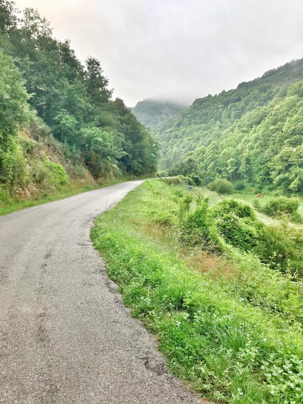 Climbing steadily walking the Camino de Santiago: Las Herrerías to O Cebreiro with Camino Travel Center on eatlivetravelwrite.com