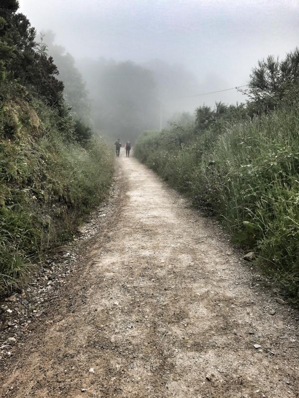 Misty roads on the way walking the Camino de Santiago: O Cebreiro to Triacastela with Camino Travel Center on eatlivetravelwrite.com