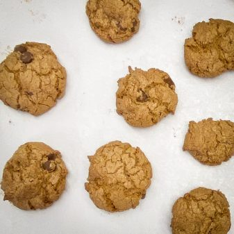 Chocolate Oatmeal Cookies from Peace, Love and Fibre by Mairlyn Smith on eatlivetravelwrite.com