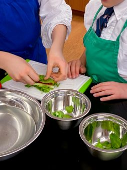 Teaching others how to make to make fresh rolls with mango with Vanessa Yeung on eatlivetravelwrite.com