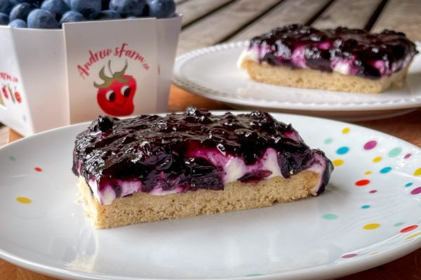 Blueberry cheesecake bars with a pint of blueberries in the background.